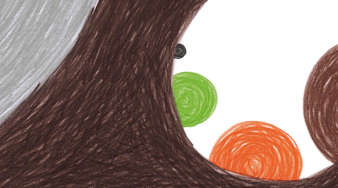 Ilustración de ¡Ojo, Oso! , cuento infantil de Nicola Grossi