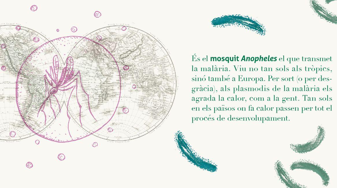 Il·lustracions i text interior de el llibre Pandèmies