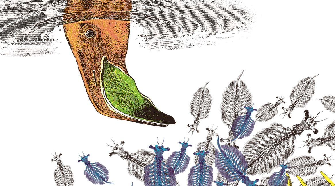 Ilustración de Celsius Pictor para el libro Los devoradores de mentes.