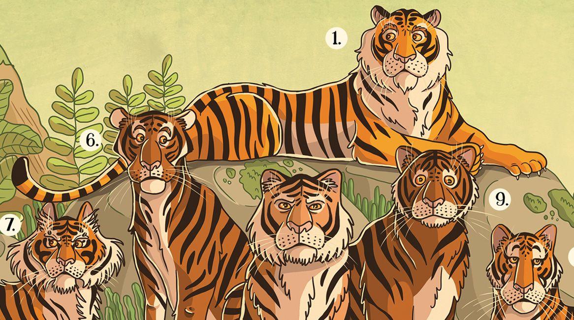 Atlas de las criaturas extintas | Nikola Kucharska | Thule Libros Ilustrados