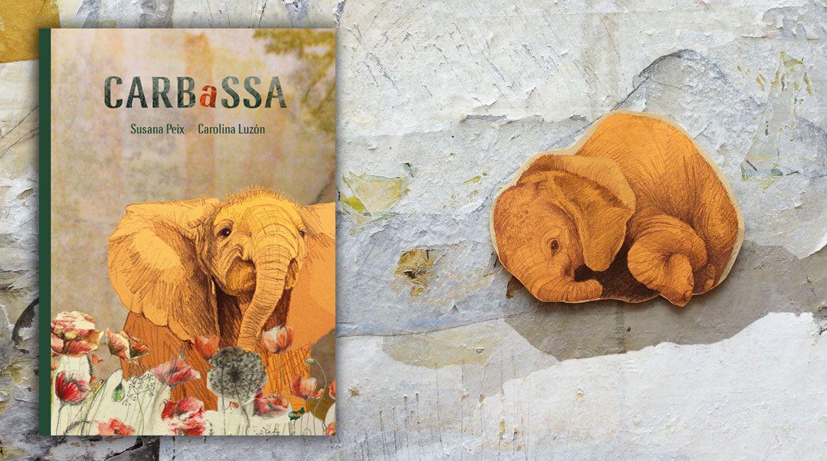carbassa-cub
