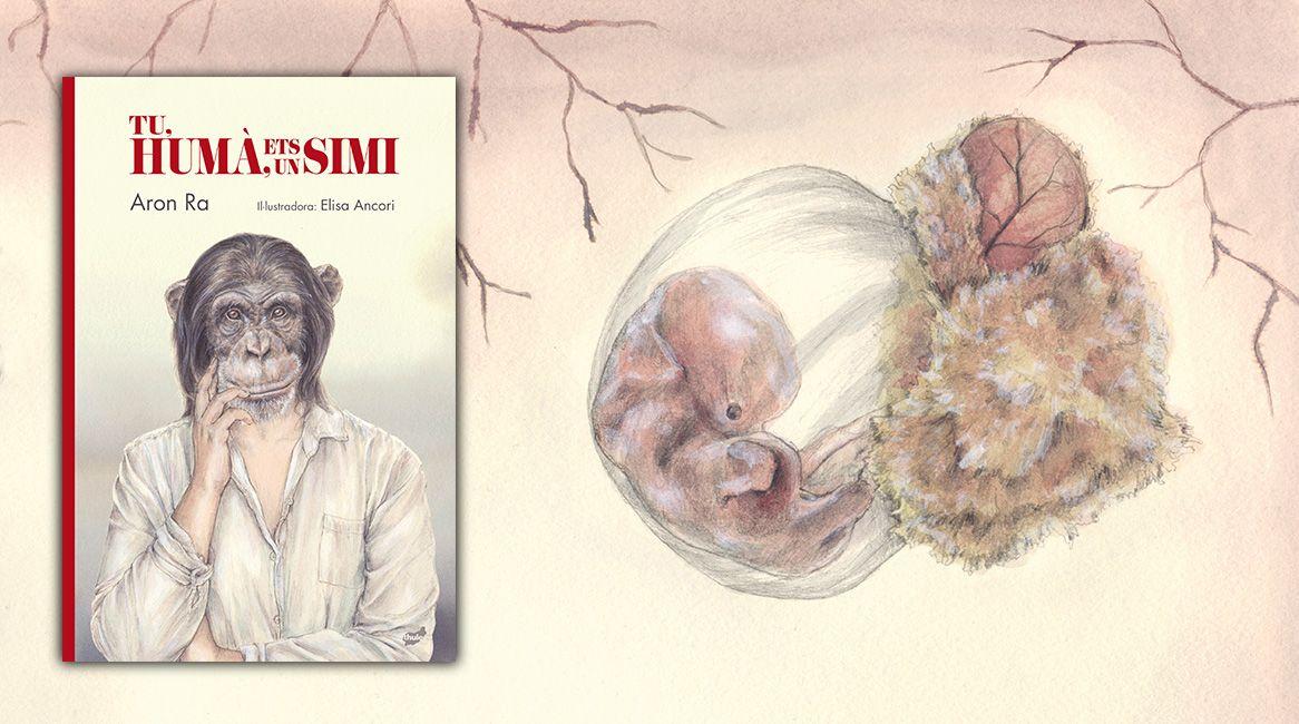 Tu, humà, ets un simi llibre il·lustrat d´Aron Ra i Elisa Ancori.